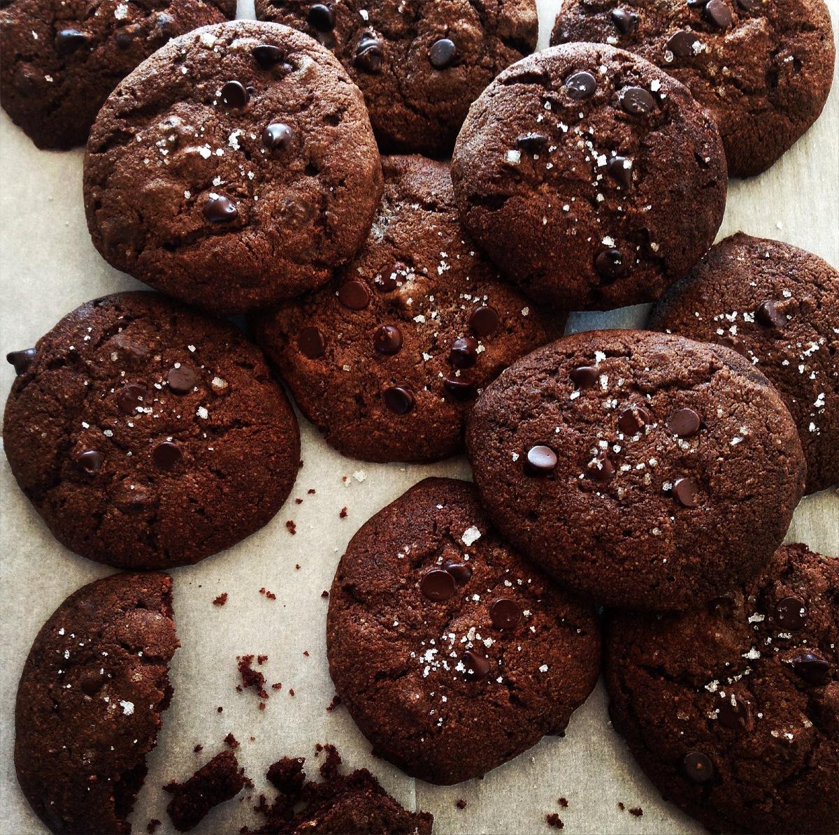 Comfort in cookies carrie fehr izmirmasajfo